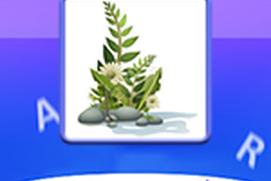 Plants Lettercatch