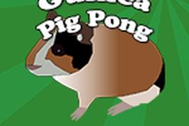 Guinea Pig Pong