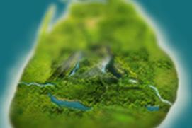 Sri Lanka City Guide