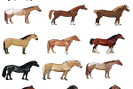 Horse Breed Matching Game