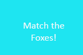 Match Foxes!