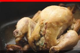 Gratis recetas deliciosas de pollo picante