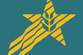 Star Solutions Mobile (FSA)