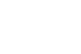 Bridge Defence