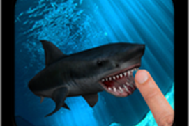 Finger Shark