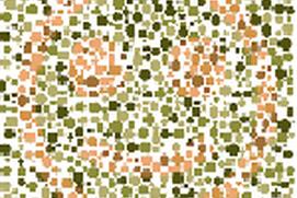 Color Blind Test for Children