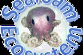 Seafoam Ecosystem