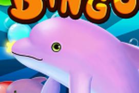 Bingo Rush - FREE BINGO GAME
