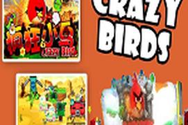 CRAZY BIRDS GIFT