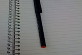 One Sentence Journal