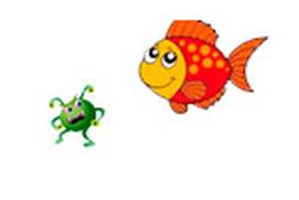 Guia de enfermedades de peces