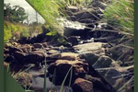 Relaxing water stream