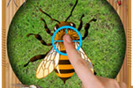Real Insects Smasher 3D