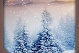virtual snowstorm