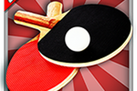 Real Ping Pong