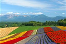 Landscape HD Wallpapers