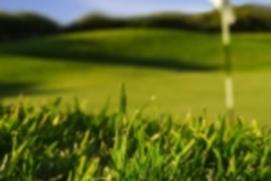 GolfCentral Free