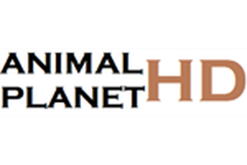 ANIMAL PLANET-HD