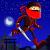 Ninja Mission