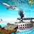 Ferry Port Transporter Pro - City Cargo Contractor