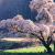 Places to See in Japan