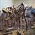 About Tyrannosaurus