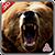 Bear Jungle Attack