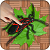 Ant Smasher Bugs Welt
