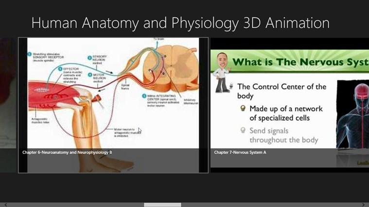 aqa human physiology and health coursework Human health and physiology 4415 (aqa - gcse) submitted by administrator on fri, 09/03/2012 - 18:10 level:.