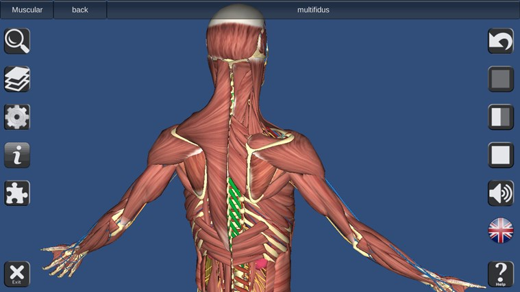 Best Human Anatomy App