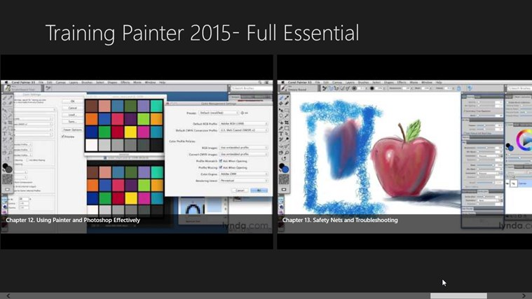 Training Painter 2015 Full Essential For Windows 8 And 8 1