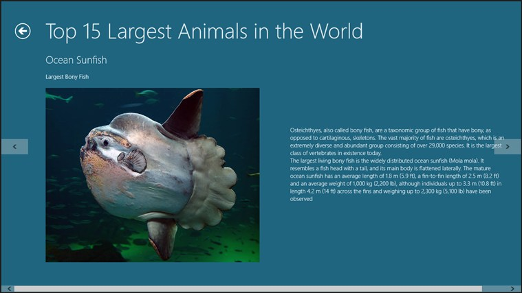 Top 15 of the Largest Animals in the World for Windows 8 ...