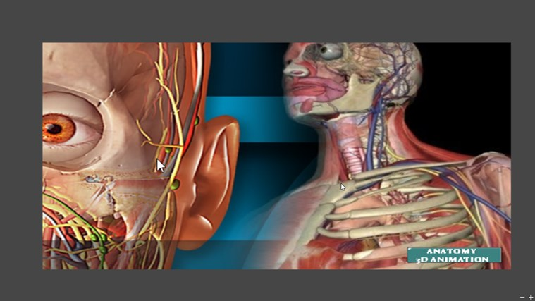Human Anatomy Video 3d Animation For Windows 8 And 81