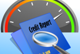 Credit Score Guide