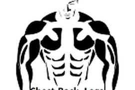 chest leg back