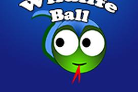 Wildlife Ball