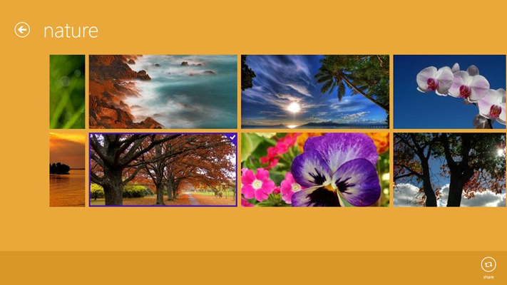 Select your favorite picture