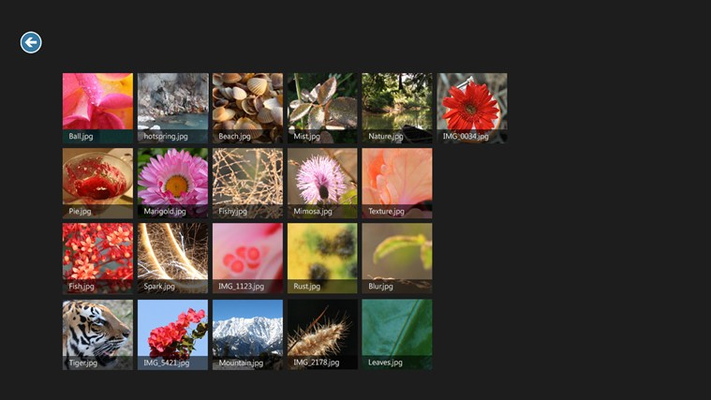 Gallery view of your images