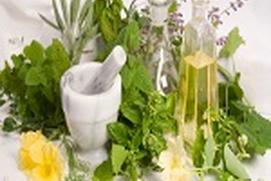 your herbal medicine cabinet