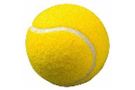 أبطال التنس