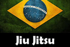 Jiu Jitsu Journal