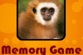 Memory Game With Sounds