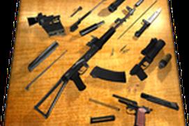Weapon Field Strip 3D