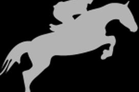 Equine Records