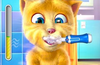 Brush teeth with Ginger