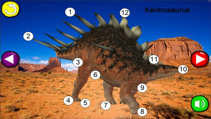 The Kentrosaurus