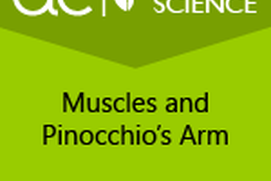 AC Life Science: Muscles and Pinocchio's Arm