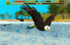 Live the life of a Bald Eagle!