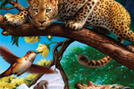 Animals Facts for Kids