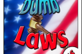 United States Dumb Laws